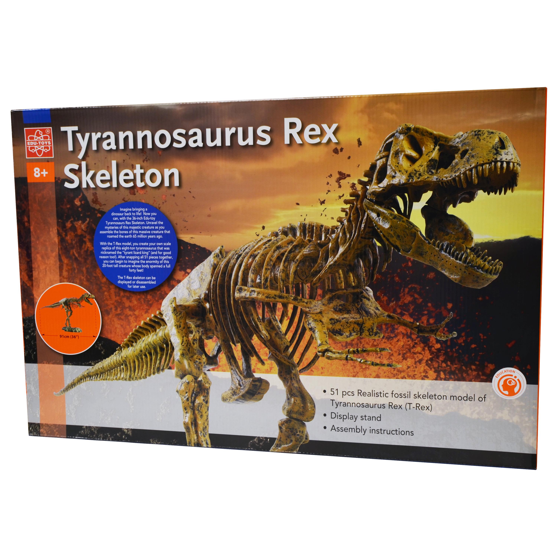 EDU-37329 - T-Rex Skeleton - Elenco Electronics